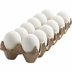 Cofraj 12 oua plastic, alb - 6 cm