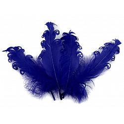 Pene crețe de găscă, lungime 12-18 cm (pachet 4 buc.) - bleumarin