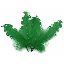 Pene crețe de găscă, lungime 12-18 cm (pachet 4 buc.) - verde brad