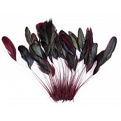 Pene decorative cocoș, lungime 13-18 cm, (pachet 50 buc.) - bordo deschis