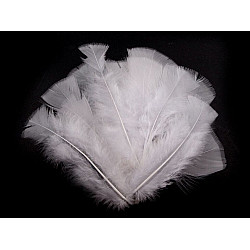Pene decorative de curcă, lungime 11-17 cm (pachet 20 buc.) - alb