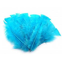 Pene decorative de curcă, lungime 11-17 cm (pachet 20 buc.) - albastru intens