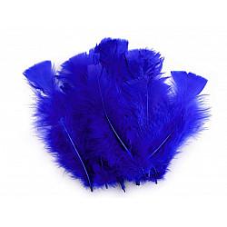 Pene decorative de curcă, lungime 11-17 cm (pachet 20 buc.) - albastru regal