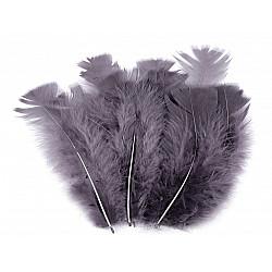 Pene decorative de curcă, lungime 11-17 cm (pachet 20 buc.) - gri