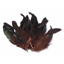 Pene decorative de găină, lungime 6-20 cm (pachet 20 buc.) - maro