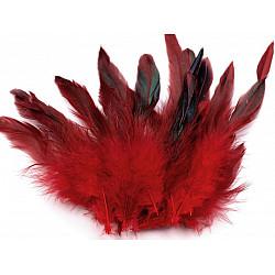 Pene decorative de găină, lungime 6-20 cm (pachet 20 buc.) - roșu închis