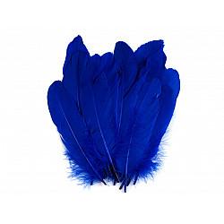 Pene decorative de gâscă, lungime 15-21 cm (pachet 5 buc.) - albastru cobalt