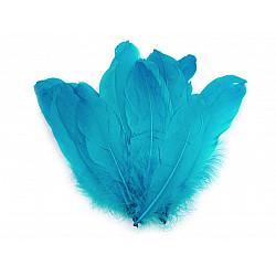 Pene decorative de gâscă, lungime 15-21 cm (pachet 5 buc.) - bleu turcoaz