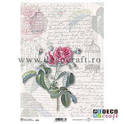Hartie de orez A4 - Flori,scrisori si colivii