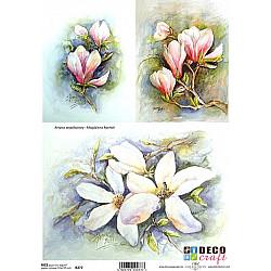 Hartie de orez A4 - Magnolii pictate