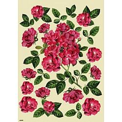 Hartie de orez - Trandafiri de dulceata