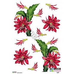 Hartie decoupage A4 - Floare din Paradis