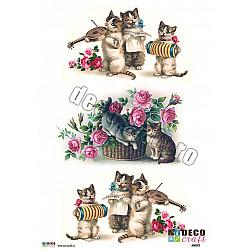 Hartie decoupage A4 - Pisicute vesele