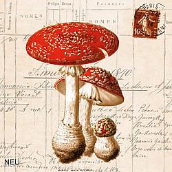 Servetele - Bureti pestriti - 33x33cm, 4 buc