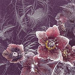Servetele - Floare inghetata - 33x33cm, 4 buc