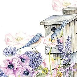 Servetele - Birdhouse Backyard - 33x33cm, 1 pachet (20 buc.)