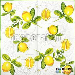 Servetele - Citrus - 33x33cm, 4 buc.