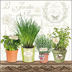 Servetele - Le Jardin De Provence - 33x33cm, 4 buc
