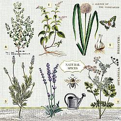 Servetele - Plante medicinale - 33x33cm, 4 buc.