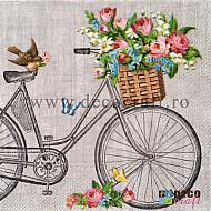 Servetele - Robin pe bicicleta - 33x33cm, 4buc