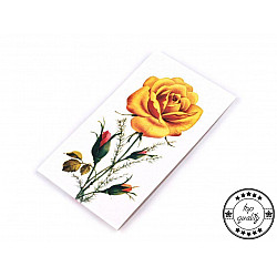 Set 19 ace - Trandafir Galant + dispozitiv ata