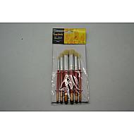 Set 5 pensule pentru sablon